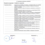 Diploma-Inginer_Sisteme_Securitate-Nichifor-C-tin-2011--3